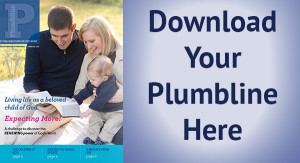 Plumbline-download
