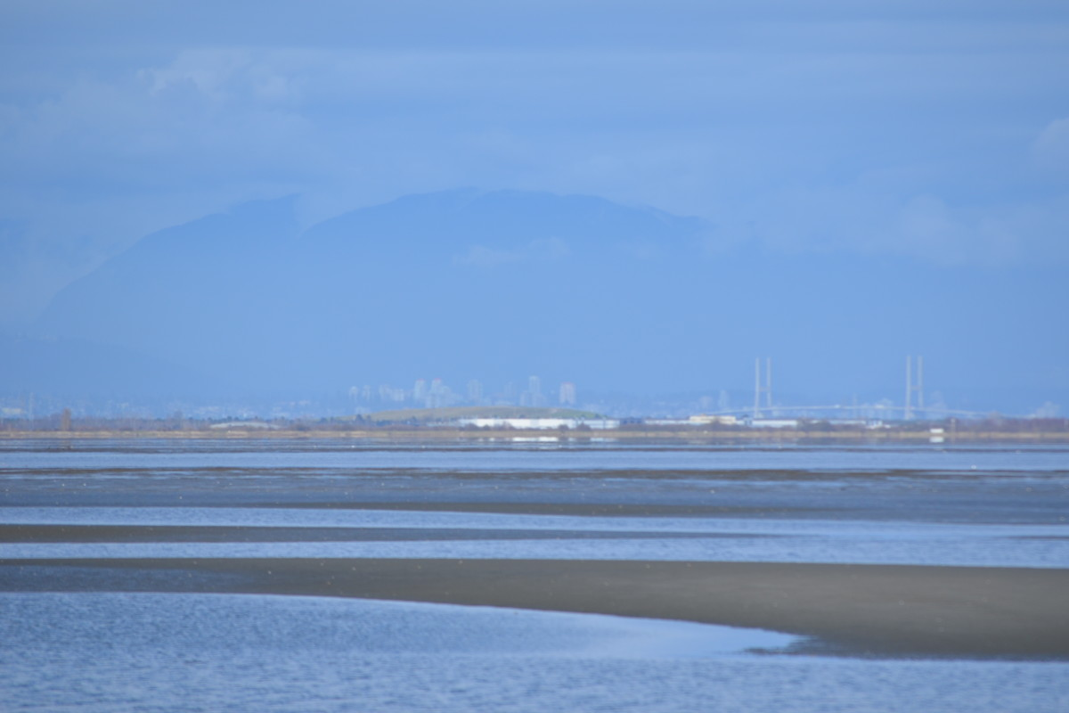 The Pacific in March at low tide along the BC coast