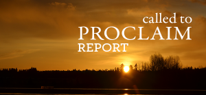 called-to-proclaim-report
